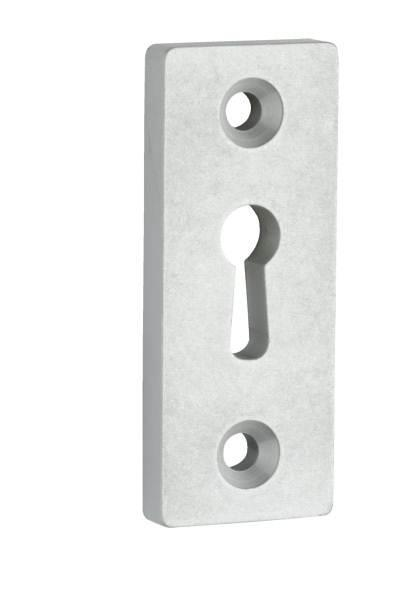AL582RT-24AS - Rectangular Lever Lock Escutcheon with Exposed Fixing (each)